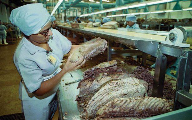 Atún mexicano llega por primera vez a la región de Qatar