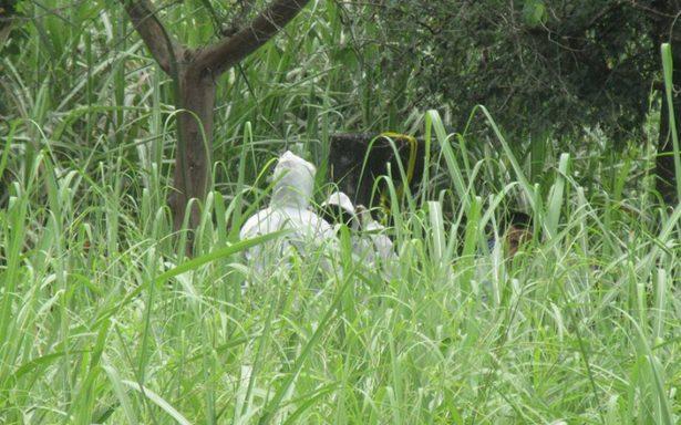Policía Federal recabará muestras de ADN de familiares de desaparecidos