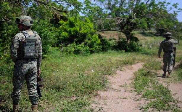 Hallan 47 cráneos en fosas clandestinas de Alvarado, Veracruz