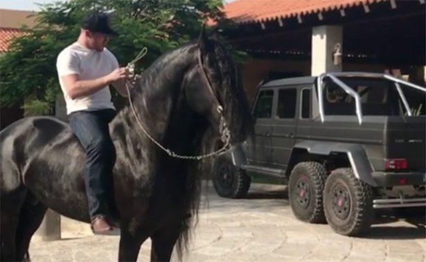 Canelo Álvarez presume su otra pasión: caballos y coches