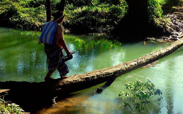 Dignifican imagen: La fotografía de la mujer indígena hecha por ella misma