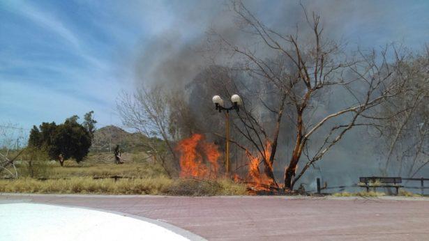 Arden más de 3 hectáreas de maleza