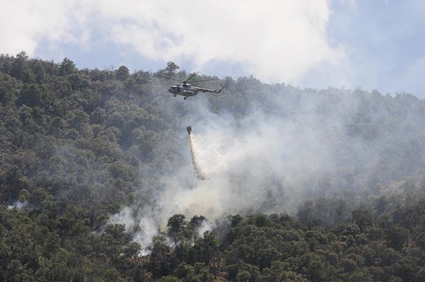 Fuego arrasa con 82 mil hectáreas