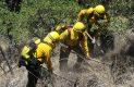 Brigadistas en accion sofocando incendio forestal-Sergio Gomez (1)