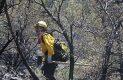 Brigadistas en accion sofocando incendio forestal-Sergio Gomez (14)