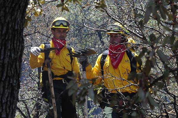 [Galería] Brigadistas en acción sofocando incendio forestal