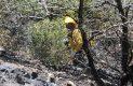 Brigadistas en accion sofocando incendio forestal-Sergio Gomez (17)