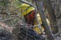 Brigadistas en accion sofocando incendio forestal-Sergio Gomez (2)