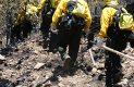Brigadistas en accion sofocando incendio forestal-Sergio Gomez (22)