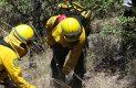 Brigadistas en accion sofocando incendio forestal-Sergio Gomez (27)