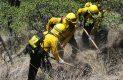 Brigadistas en accion sofocando incendio forestal-Sergio Gomez (28)