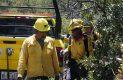 Brigadistas en accion sofocando incendio forestal-Sergio Gomez (9)