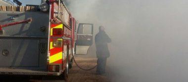 Rescatan policías a dos perros y periquitos del amor en un incendio