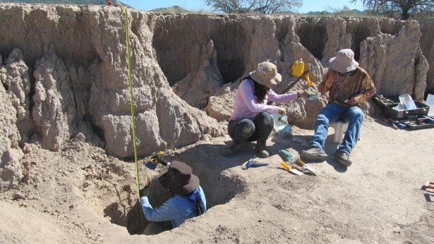 Arqueólogos encuentran maíz de 4 mil años de antigüedad en Sonora