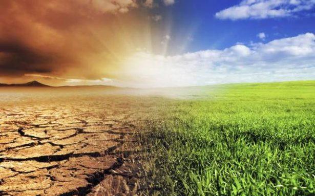 Golpea calentamiento global a Sonora