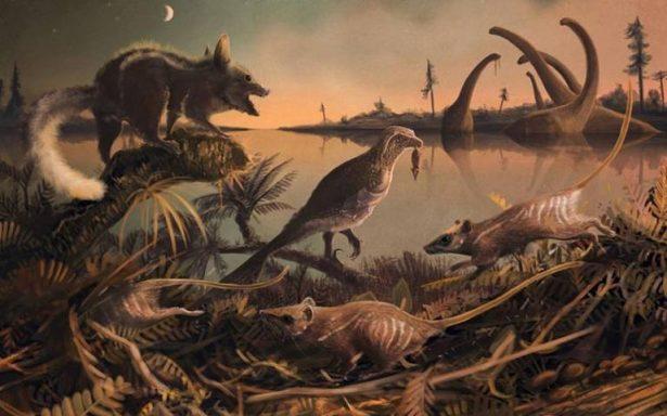 Hallan en Inglaterra fósiles del ancestro más antiguo del hombre