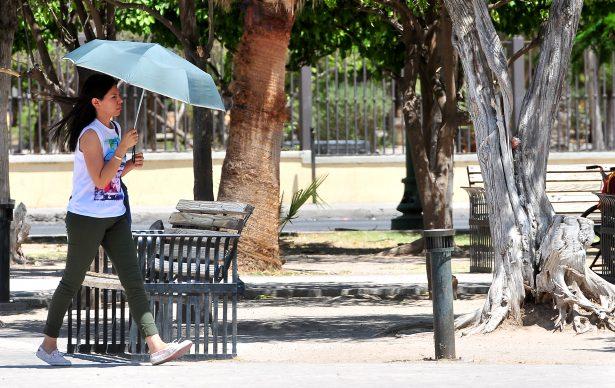 Sigue el tiempo cálido para Sonora