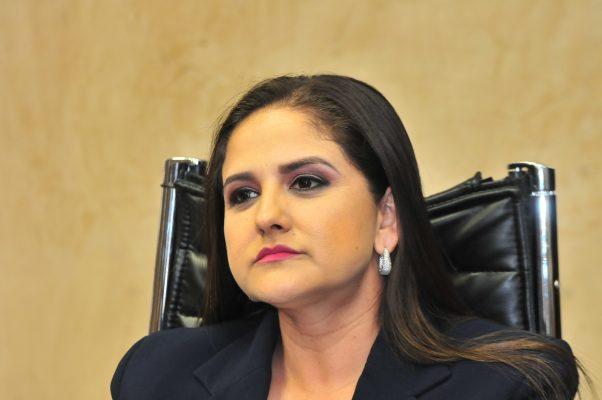 No abandoné el PAN por problemas legales: Célida López