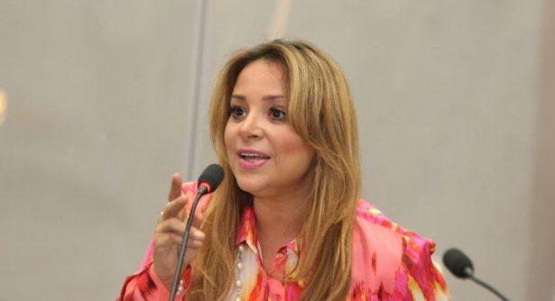 """Una """"estupidez"""" que panistas critiquen una solicitud de financiamiento: Flor Ayala"""
