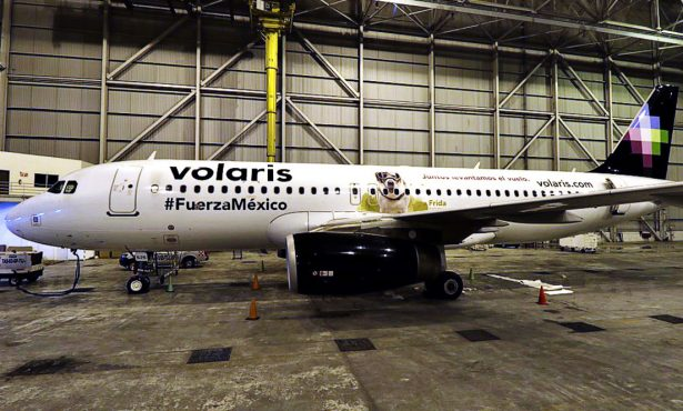 Aerolínea coloca foto de perrita Frida en un avión como homenaje a brigadistas del 19-S