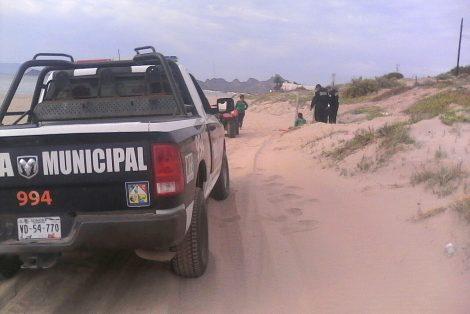 apoyo en Bahía de Kino con tortugas que eclosionaron (2)