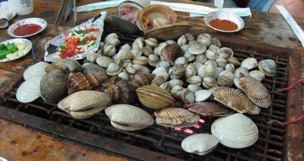 Declaran veda de moluscos en Sonora por presencia de toxina