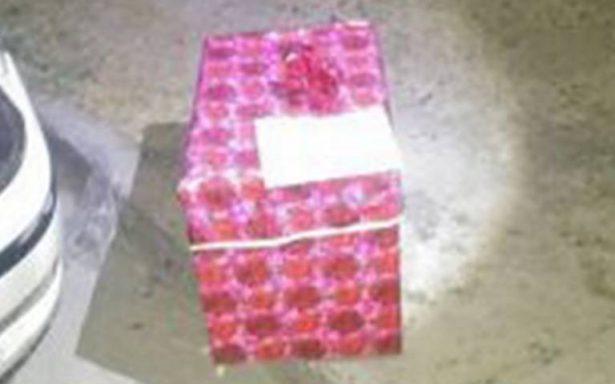 San Valentín sangriento: le dejan en su puerta una cabeza de lechón como regalo