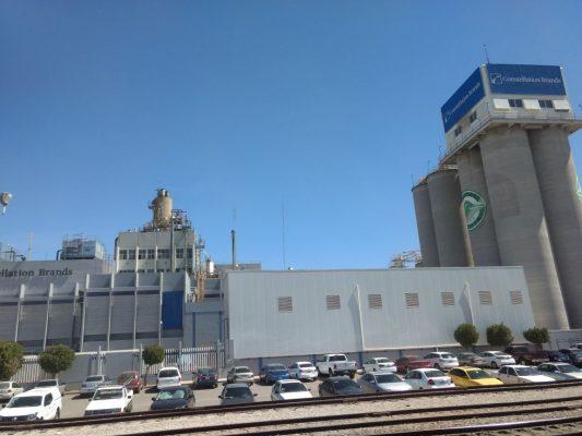 Invertirán 900 mdd en planta productora de cerveza en Obregón