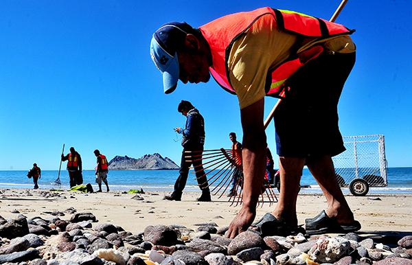 Infractores realizan limpieza en la playa de Bahía de Kino