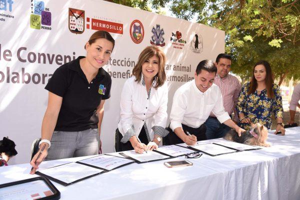 Firman convenio Ayuntamiento y organizaciones civiles a favor de los animales