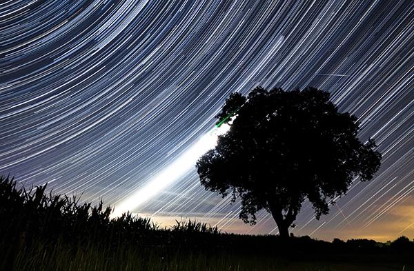 """Invitan a observar estrellas """"líridas"""""""