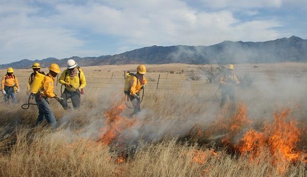 Trabaja Conafor en dos incendios forestales en Sonora