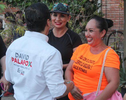 Cuatro causas sociales distinguen nuestro proyecto legislativo: David Palafox