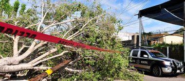 Declaran Estado de Emergencia a Empalme, Guaymas y Hermosillo