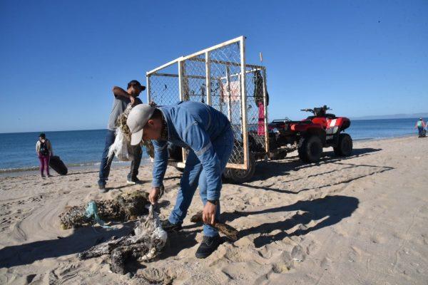 Retira voluntariado tres toneladas de las playas de Bahía de Kino