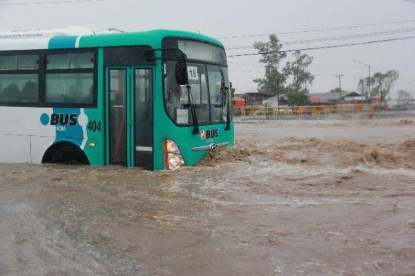 Debido a las condiciones reactivan el servicio del transporte en Hermosillo
