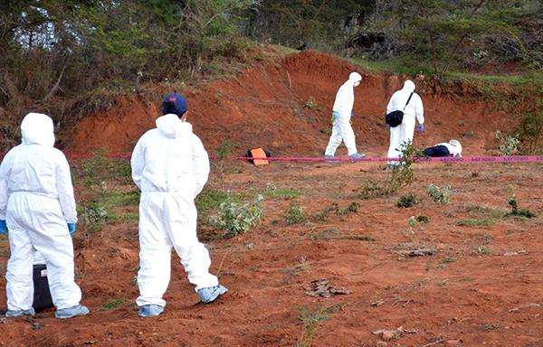 Carroñeros devoran un cadáver humano en carretera a Nogales