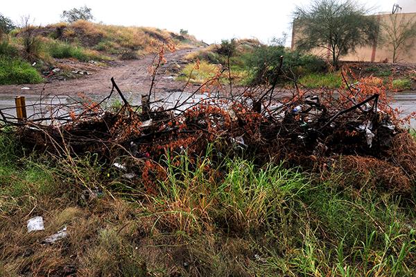 Acumulación de desechos en arroyo de las Fuentes