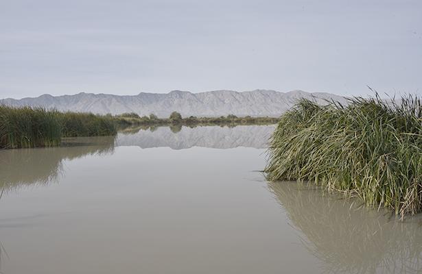 Reciben tratamiento de aguas residuales solo el 34% de los municipios: INEGI