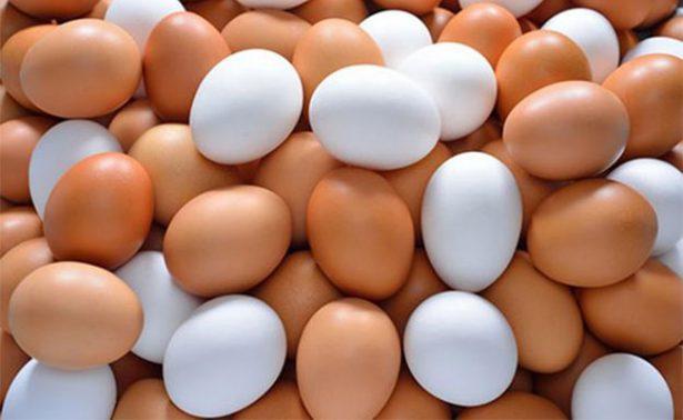 Responsables de contaminación de huevos en Europa serán sancionados