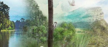 """Exposición """"México vivo…"""" busca sensibilizar sobre la conservación de la naturaleza"""