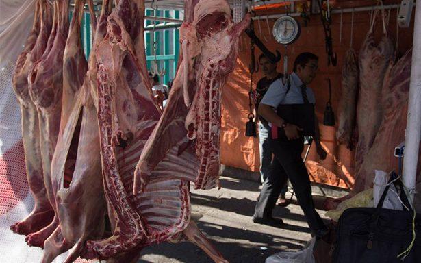Producción de carne en México alcanza una cifra récord