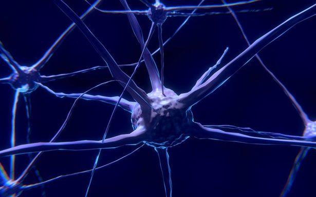 Técnica de un mexicano permitirá reactivar neuronas dañadas por Alzheimer y Parkinson