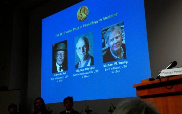 Tres estadounidenses, Nobel de Medicina por estudios del reloj biológico