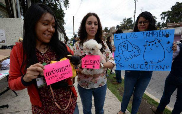 Mascotas damnificadas no serán dadas en adopciónpor el momento