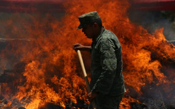 Militares destruyen cultivos de mariguana en noroeste de México