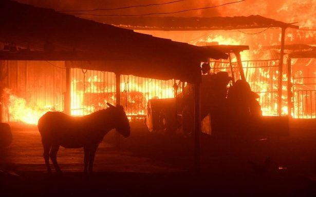 Cancillería apoyará a mexicanos afectados por incendio en California