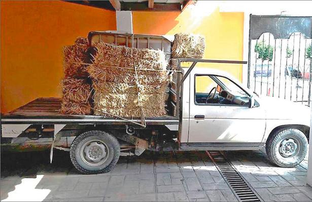 Entre cebada camuflaba bidón de gasolina robada; apresado