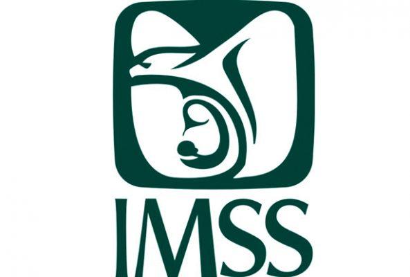 Funciona en Hidalgo IMSS Digital