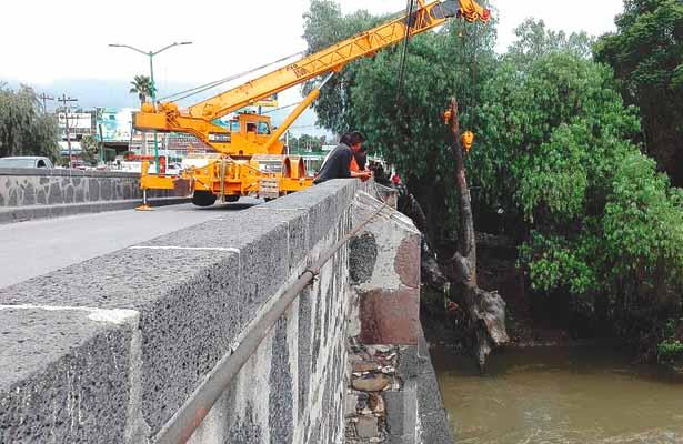 Bomberos retiran troncos del río